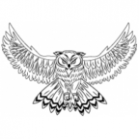 Owl Brands Of The World Download Vector Logos And Logotypes