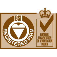 Logo of ISO BSI Registered Firm