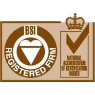 Logo of ISO BSI Registered Firm