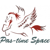 Logo of Pas-time Space