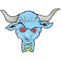 Logo of Brahma Bull