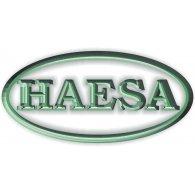 Logo of Haesa Comercial