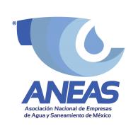 Logo of Aneas Color