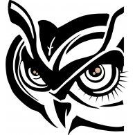 Logo of Owl Clothing