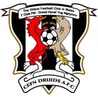 Logo of Cefn Druids AFC