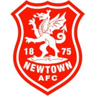 Logo of Newtown AFC