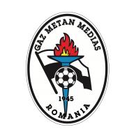 Logo of Gaz Metan Medias